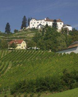 Foto Schloss Kapfenstein