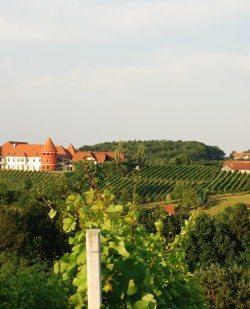 Foto Weinschloss Fam. Thaller