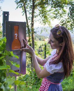 Foto Weinkulturweg Kollerhof