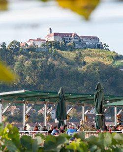 Foto Burgwein:gut – Buschenschank Bernhart